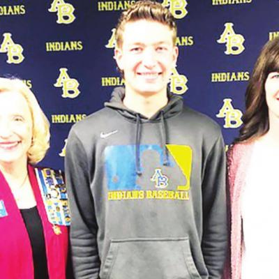 County students earn DAR awards