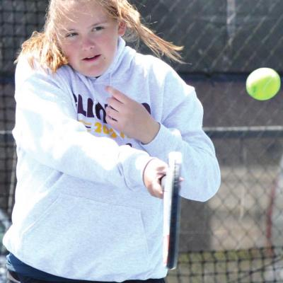 Clinton sees solid placers at Elk City