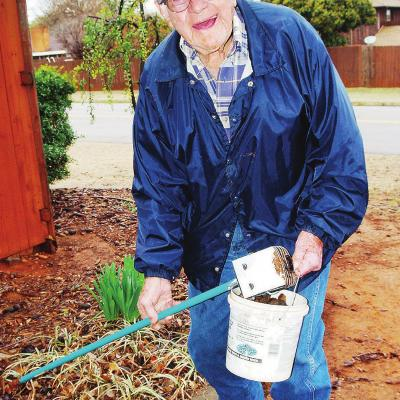 Pecan lovin' neighbor helps out