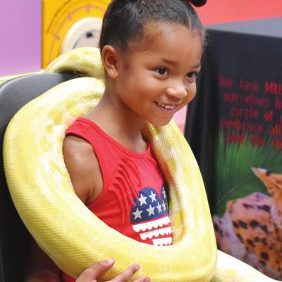 Python hugs at the library