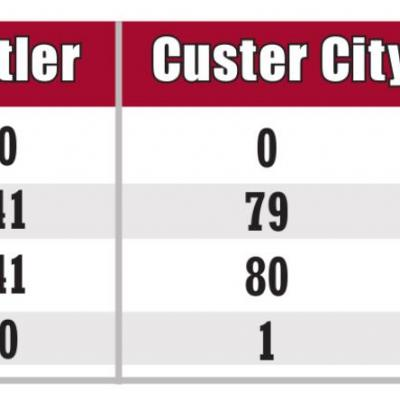 WEEKLY UPDATE ON COVID-19 CASES IN CUSTER COUNTY